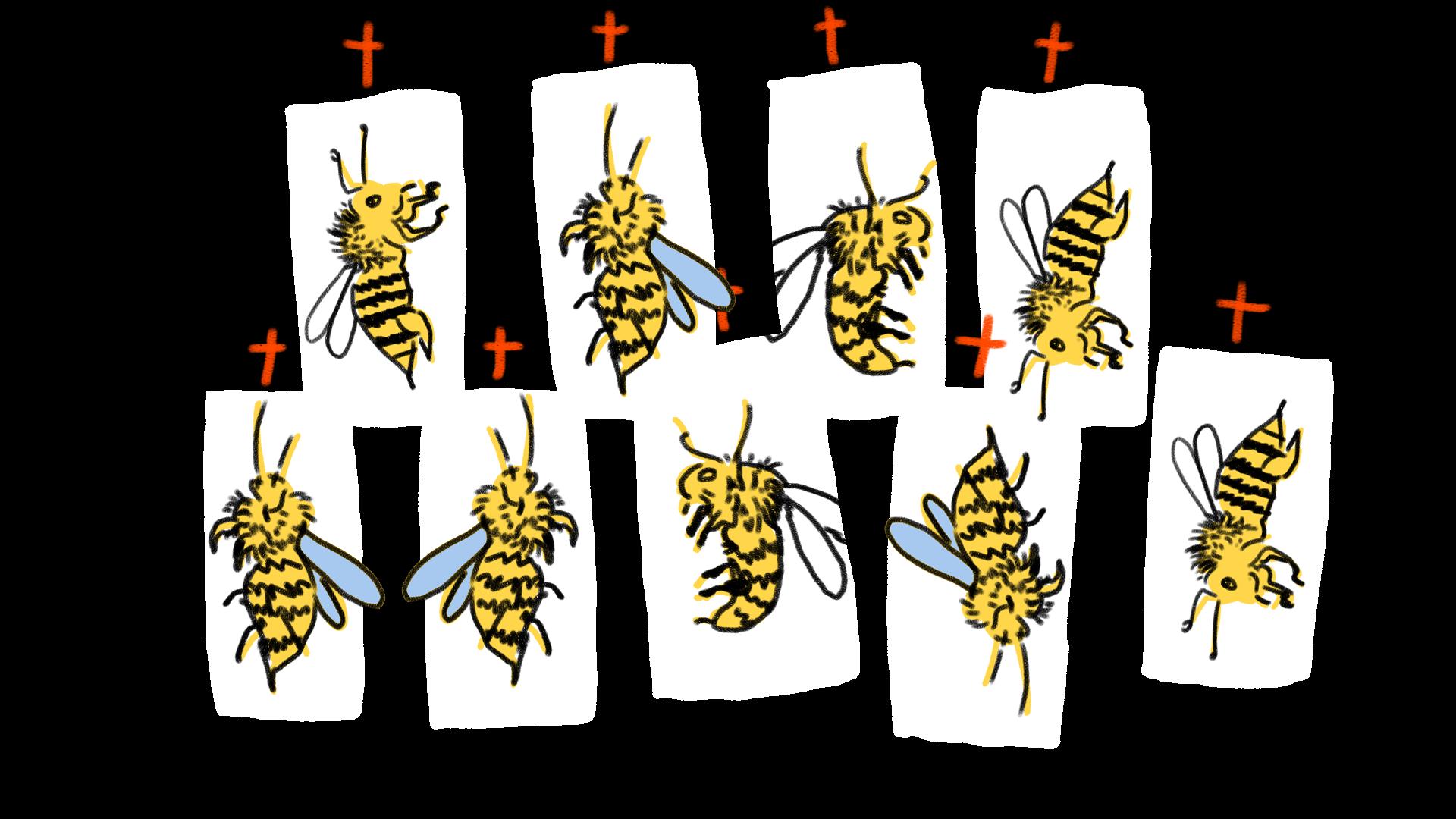 200702_bijensterfte